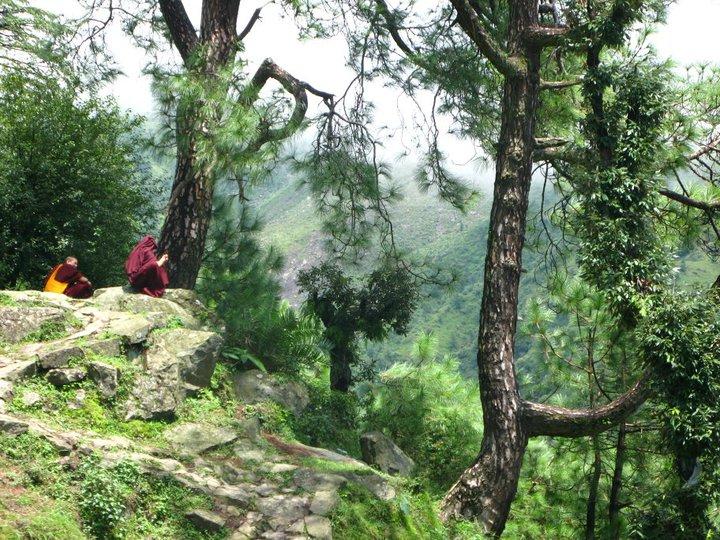Monaci buddisti sulla strada di Mc Leod